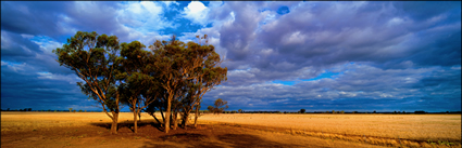 Northern NSW- Landscapes