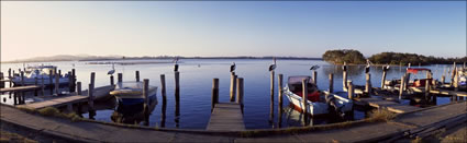 Boats and Pelicans - Tuncurry - NSW (PB00 2159)