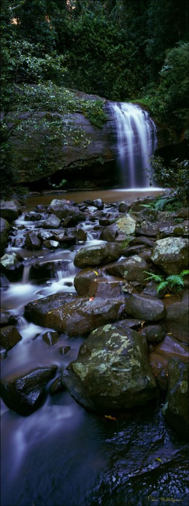 Buderim Waterfall - Vertical - QLD