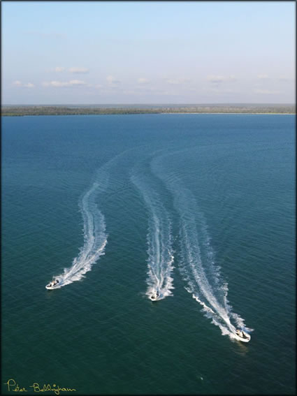 Cape Don Boats - NT (PBH3 00  12519)