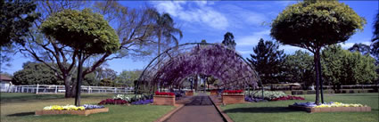 Garden at Toowoomba - QLD (PB00 3598)